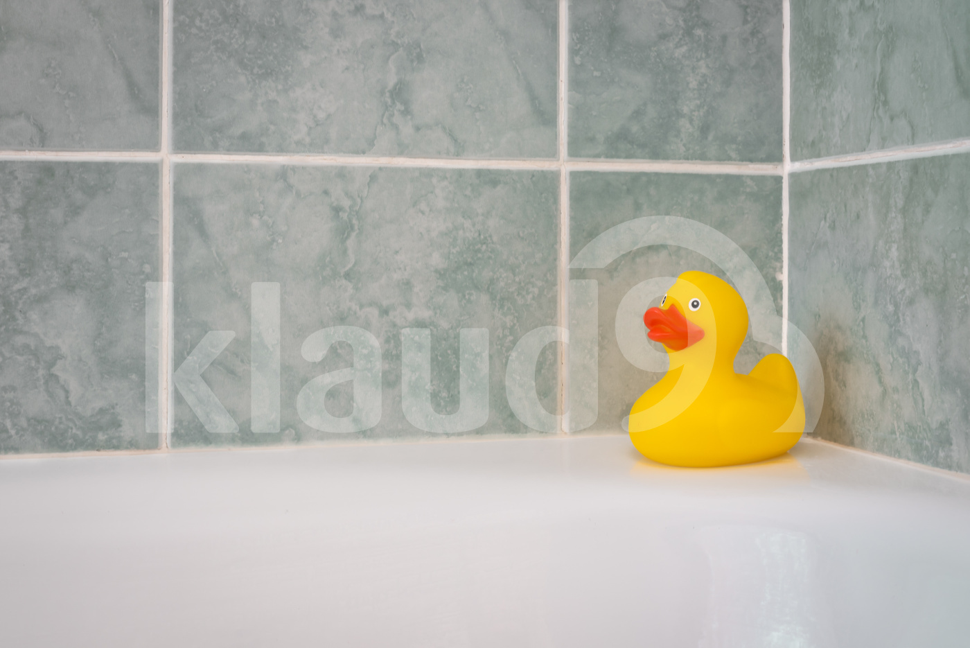 Yellow rubber duck in the bathroom